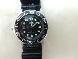 Citizen Men's Dive Watch: Stainless Steel Eco-Drive